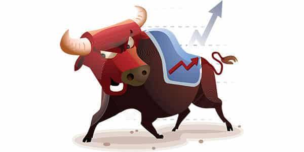 bull media